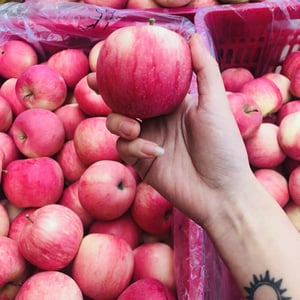 Pure and Fresh Apple Fruits