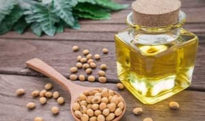 Organic and Natural Edible Olive Oil