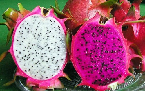 100% Frozen Dragon Fruit