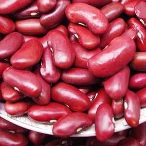 Healthy and Natural Red Kidney Beans