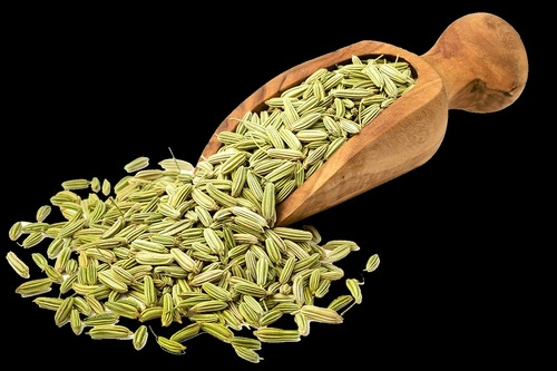 99.9% Pure Fennel Seeds