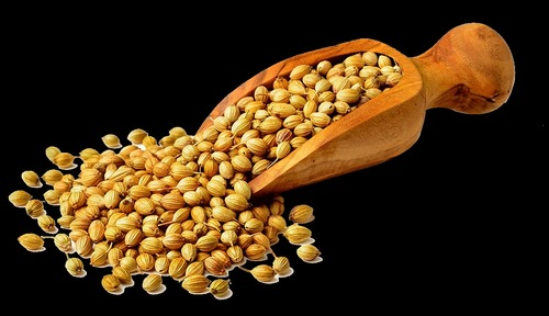 Chemical Free Coriander Seeds