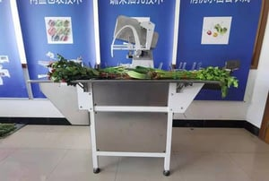 Automatic Vegetable Flower Noodles Binding Machine