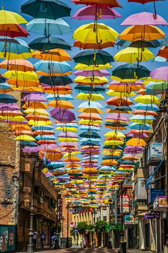 Plain Single Color Umbrella