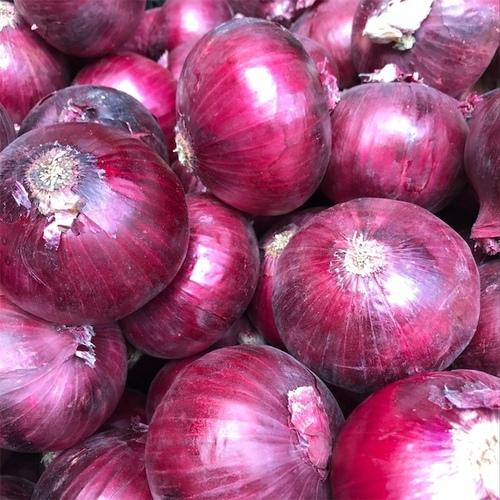Newest Crop Red Onion