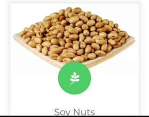 Highly Nutritious Soya Nuts