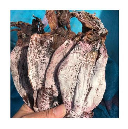 Dried Black Squid Fish