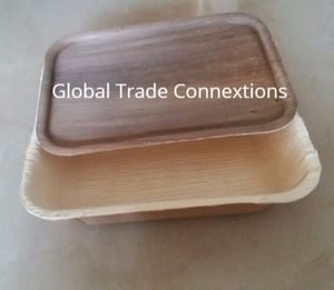 Disposable Areca Leaf Container With LID