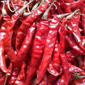 Sun Dried Red Chillies