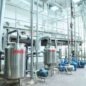 High Efficiency Herbal Extract Plant