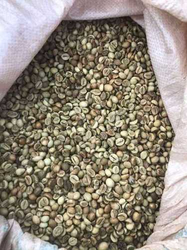 Dried Robusta Coffee Beans