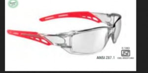 Safety Goggles Clear (V20 Model)