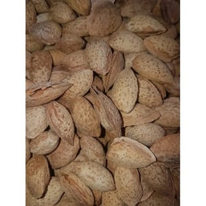 Raw Unadulterated In Shell Almond Nuts
