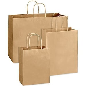 Eco Friendly Paper Carry Bags