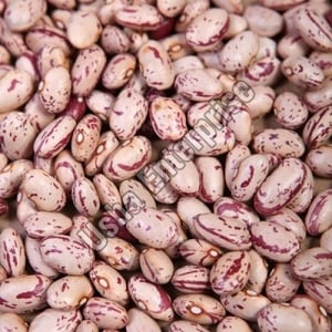 Healthy and Natural Organic Speckled Kidney Beans