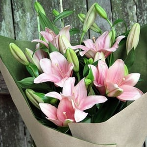 Healthy and Natural Fresh Lily Flowers