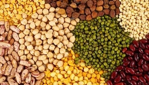 High Protein Indian Pulses
