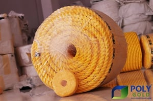 PP Rope (Poly Gold)