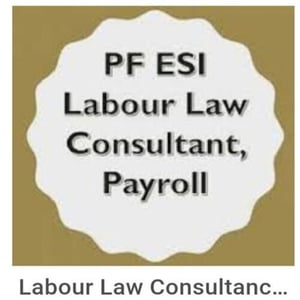 Salary Processing Payroll Consultant Service