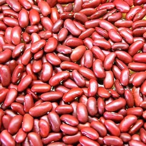 Healthy and Natural Organic Red Kidney Beans
