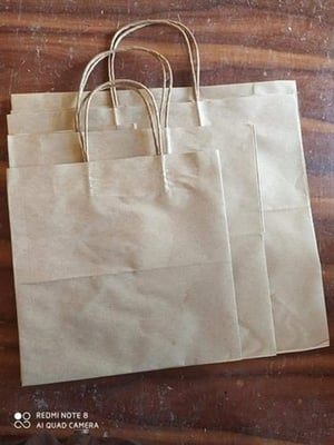 Disposable Brown Paper Carry Shopping Bags