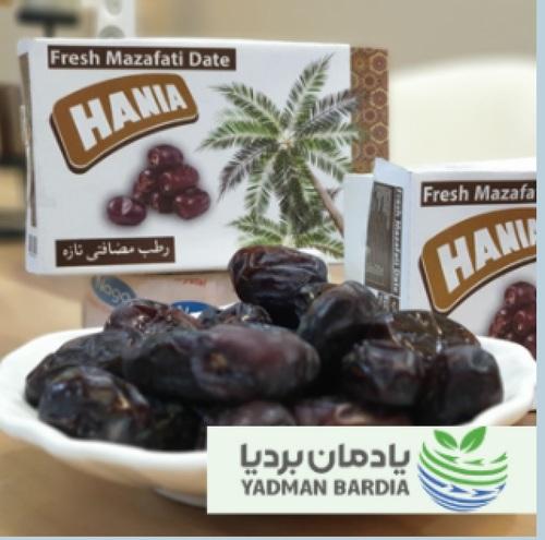Fresh Mazafati Iranian Dates