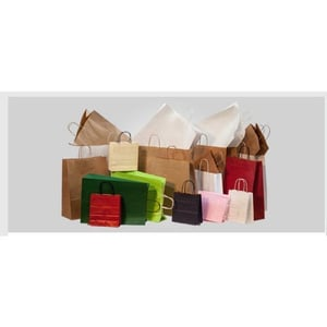 Carry Bag Paper Testing Service
