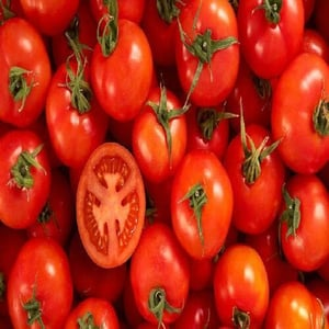 Healthy and Natural Fresh Organic Red Tomato