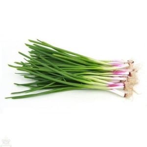 Healthy and Natural Fresh Spring Onion