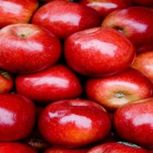 Healthy and Natural Organic Fresh Red Apple