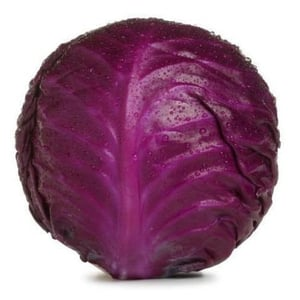 Healthy and Natural Organic Red Fresh Cabbage