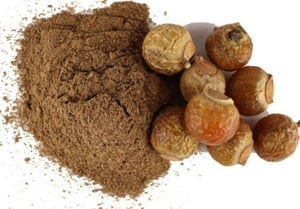 Dried Soap Nut Aritha Extract Powder