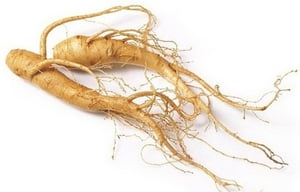 Ginseng Extract Dried Powder