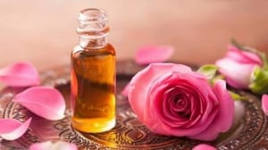 Natural and Pure Rose Oil