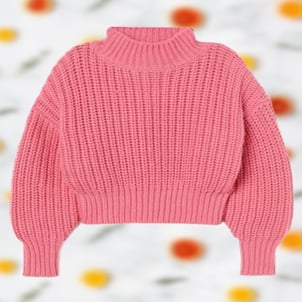 Full Sleeves Collar Neck Womens Pink Fancy Sweaters
