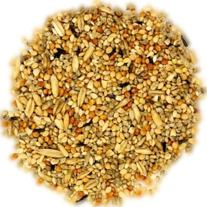 Healthy And Energetic Bird And Animal Food