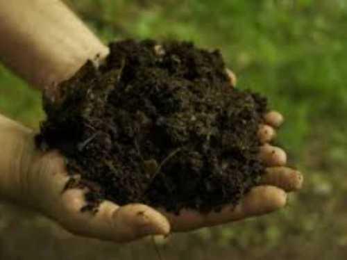 Organic Brown Fertilizer Powder