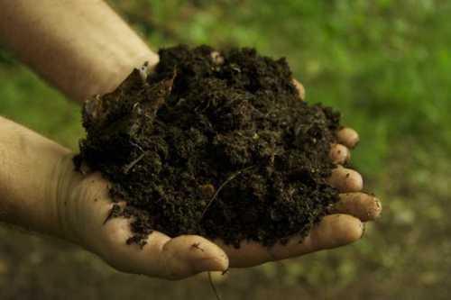 Black Soluble Fertilizer Powder