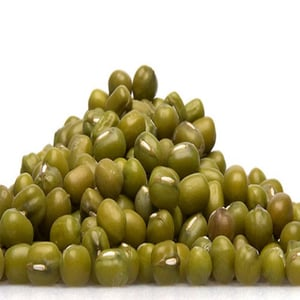 Admixture 1% Maturity 100% High in Protein Organic Green Whole Mung Beans