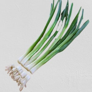 Enhance The Flavour Natural and Healthy Organic Fresh Green Onion