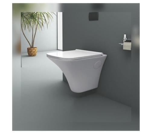 Radius Toilet Seat with Dual Flush