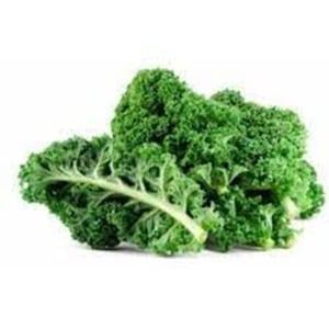 Natural Green Fresh Kale for Cooking