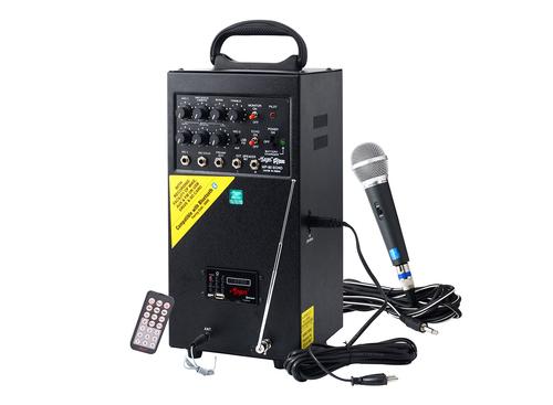Mega MP-80 UE (USB + Echo) 80 watts