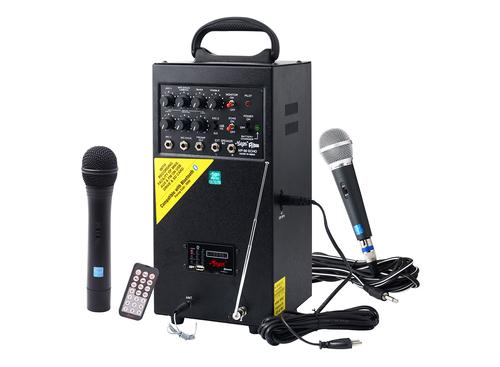Mega MP-80 UEC (USB + Echo + cordless) 80 watts