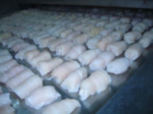 Frozen Pangasius Fillet Roll