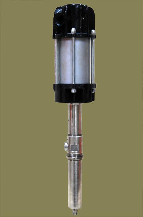 Ss Barrel Pump