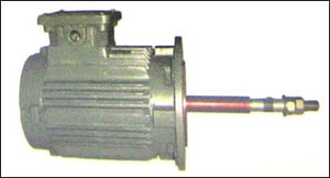 Electric Motor with S.S. Shaft