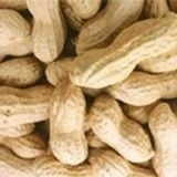 High Grade Peanut In Shell