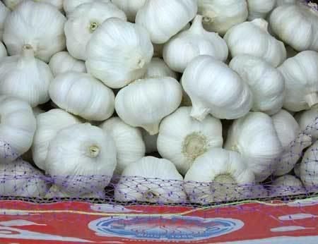 100% Natural Fresh Garlic