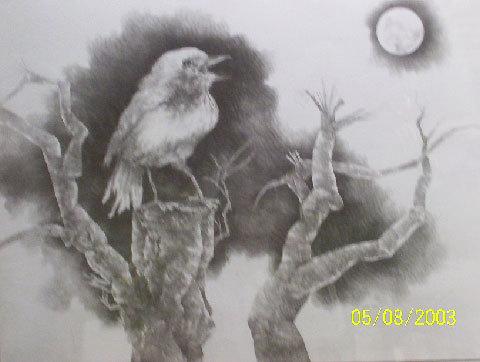 Nightingale Bird Paintings